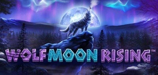 Основные символы и параметры видеослота Wolf Moon из казино Fresh